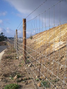 Rede Ovelheira ou Agrícola